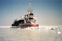 Bothniaborg - Van Dijk Shipping